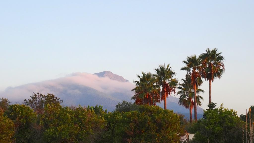 Levée du jour sur La Sierra de las Nieves, devant le Cortijo ... Grandiose !