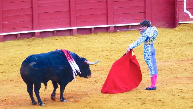 """Le """"Matador"""" annonce à la foule qu'il portera le coup fatal a l'animal déjà très affaibli"""