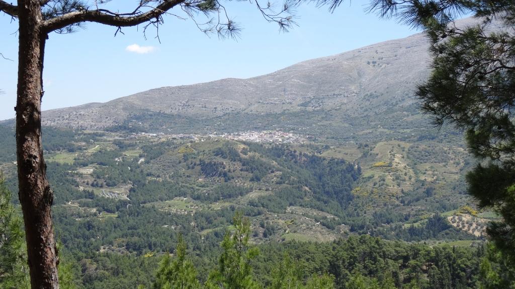 Campagne montagneuse du centre de l'île