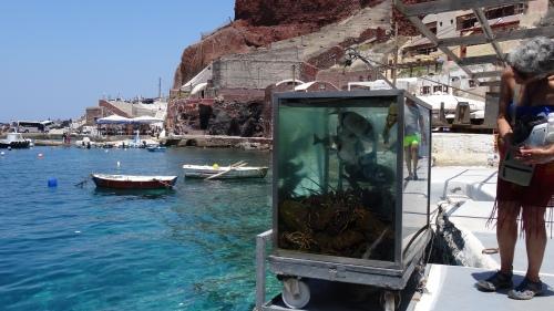 Aquarium d'arrivage de poissons, n'attendant que d'être choisi ... et déguster
