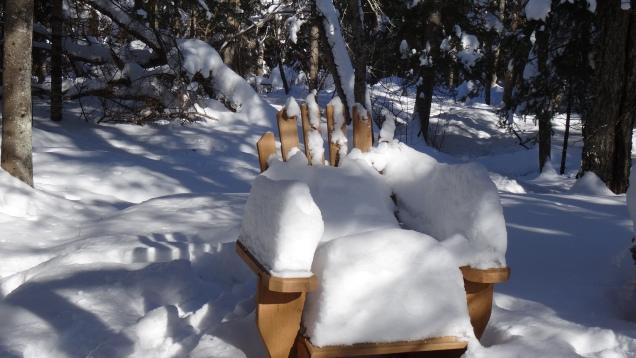 Que la neige a neigé ! / It snowed a lot !