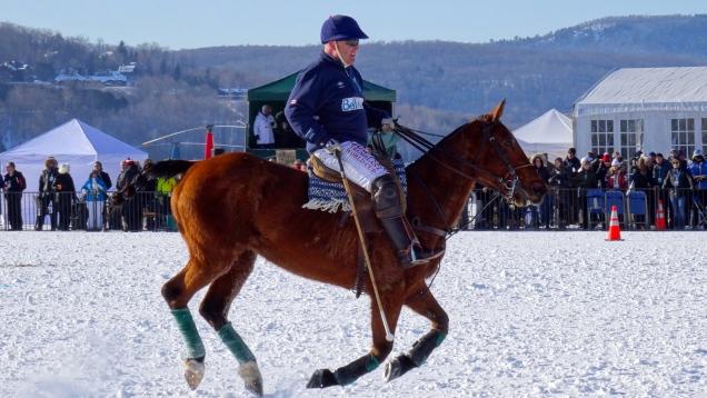 Cavalier en position de frappe / Rider ready for shooting