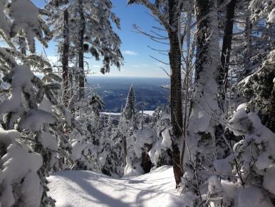 Paysage au sommet de Tremblant Summit Scenery