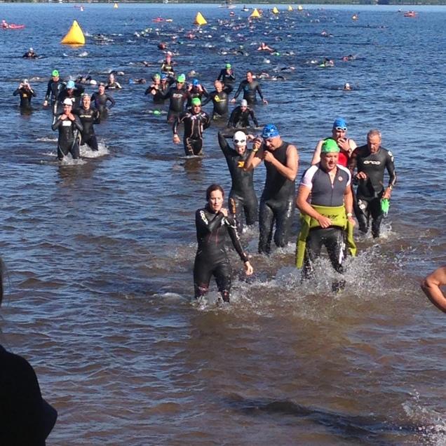 1,5 Km de natation