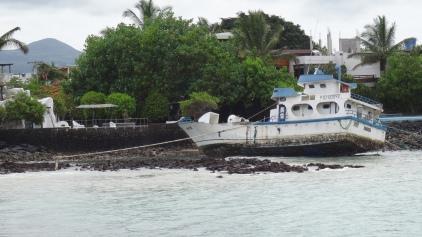 Vieux bateau de pêcheurs au port \ Old fishing boat at the port