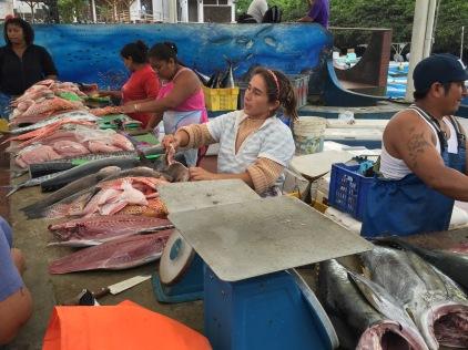 Poissons dépecés prêt à la vente / Fish for sale