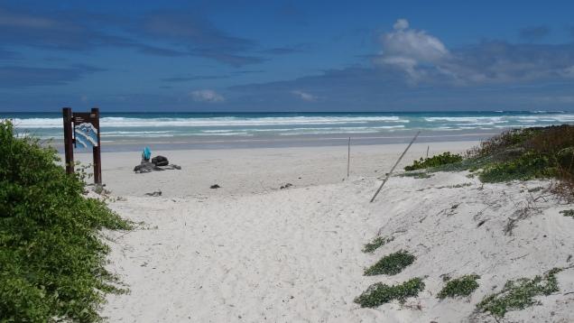 Plage de sable fin / Sandy Beach