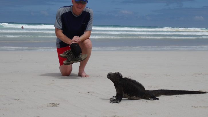 Rencontre impromptue / Not exactly what is expected on a sandy beach !