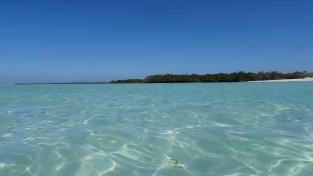 Mer de couleur émeraude / Emerald Sea Waters