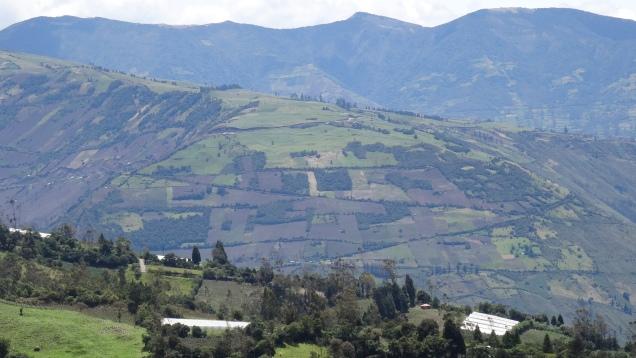 Montagne cultivée / Farming Mountain