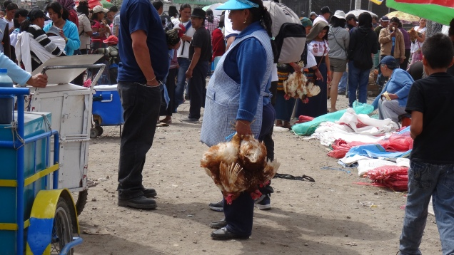 Le marché agricole du samedi / Saturday Farm Market
