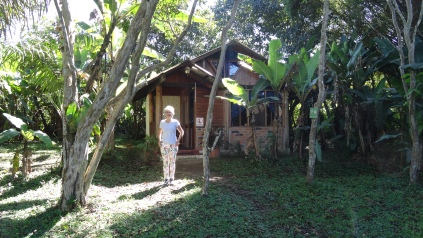 "Notre ""Cabaña"" en forêt tropicale / Our ""Cabaña in the Tropical Forest"