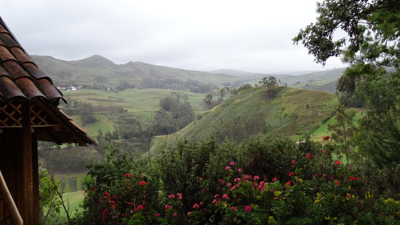 Vue sur la montagne / Mountain View