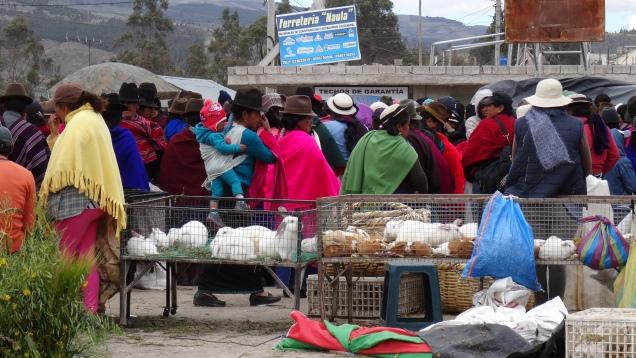 Les indigènes au marché local / Indigeneous at the Local Market