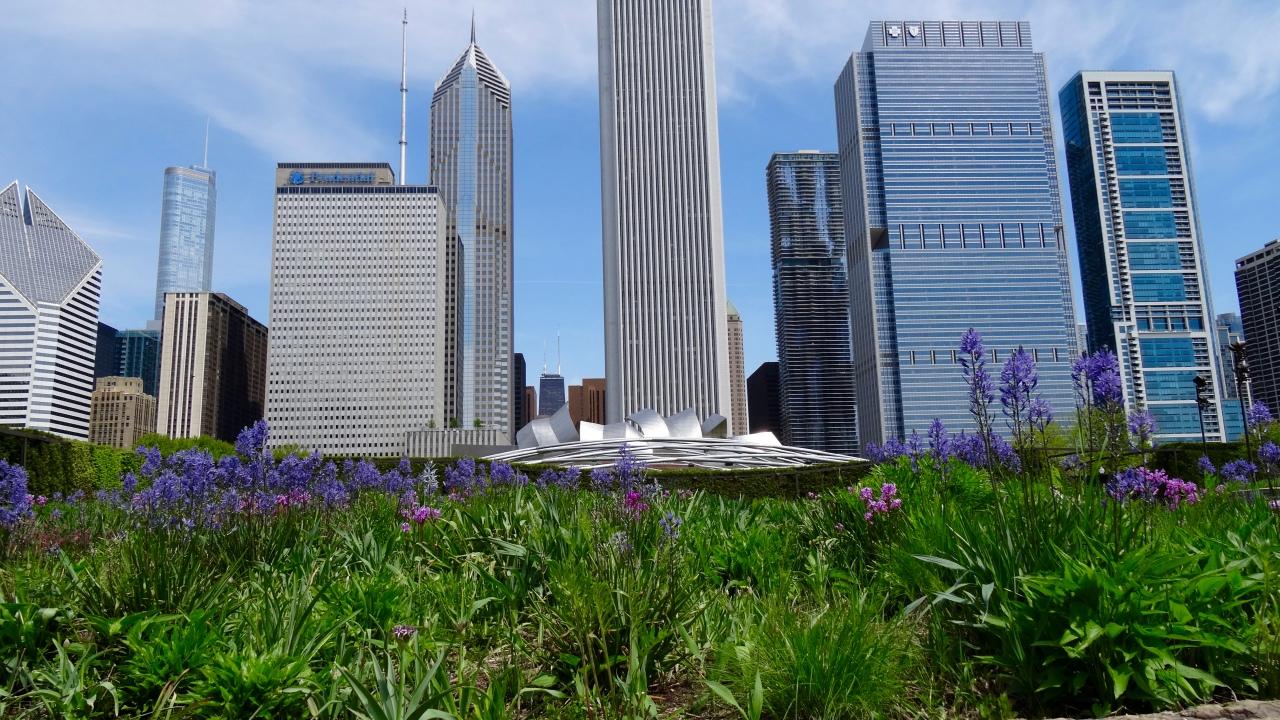 Chicago et l'art, Détroit et lamusique
