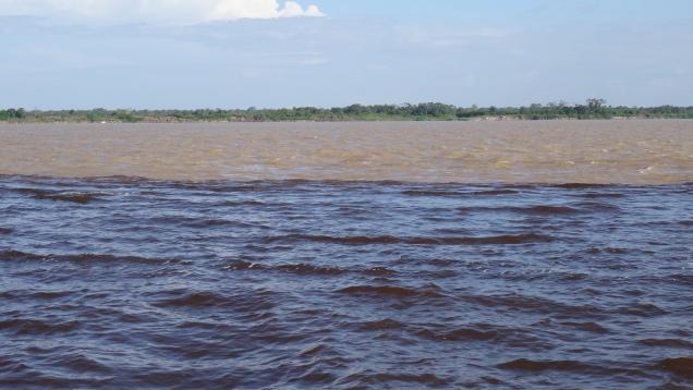 Le Rio Negro et plus loin l'Amazone