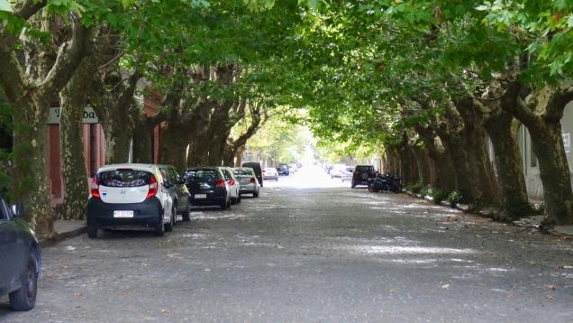Rue résidentielle de Colonia