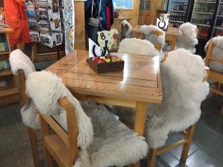 Quel comfort ! ... peau de mouton au resto