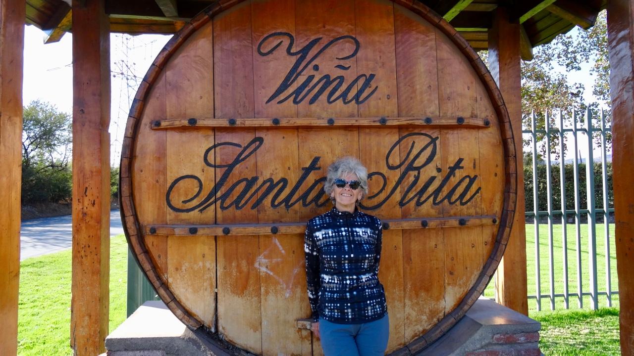 Tour des grands vignobles chiliens – Visites etDégustations