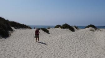 Dunes de sable à Aveiro
